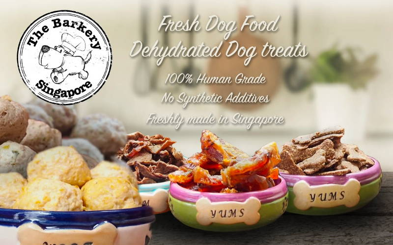 The Barkery fresh frozen dog food and dehydrated air-dried dog treats collection mobile