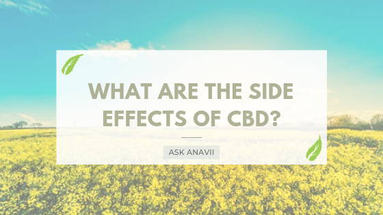 What Are The Side Effects of CBD? | Shop Premium Verified