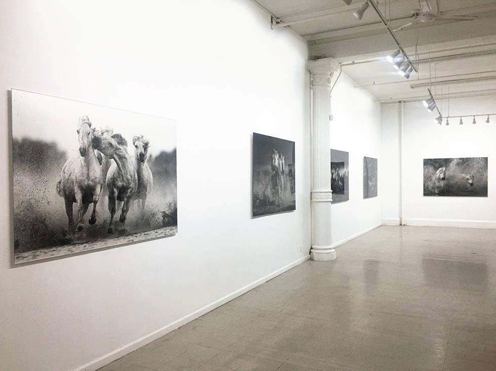 Fine Art Gallery in New York