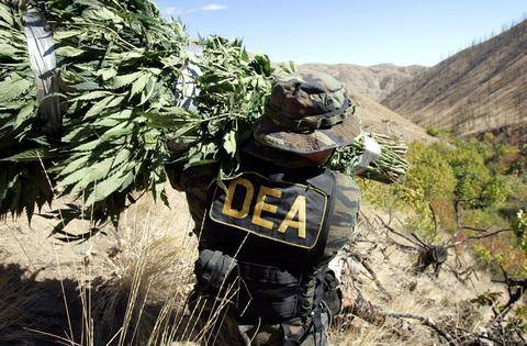DEA says hemp derived CBD oil products are federally legal