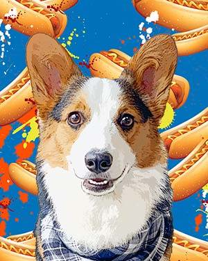 corgi on hotdog background