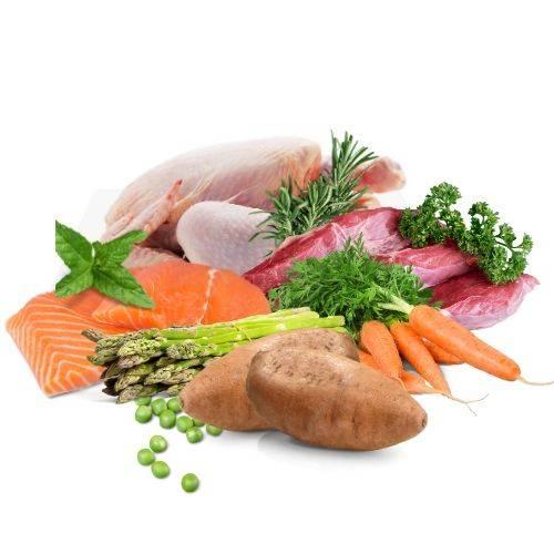 Bone Idol Healthy Dog Food, Health Ingredients, Salmon Dog Food, Chicken Dog Food, Sweet potato Dog Food