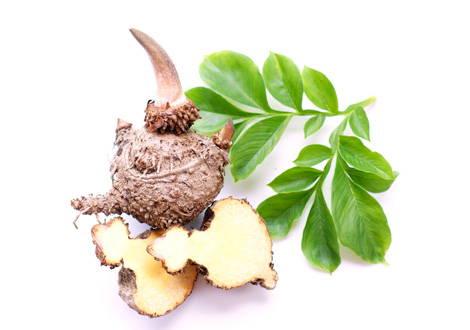 Als Konjak-Wurzel bezeichnet man die Knolle der Konjak-Pflanze