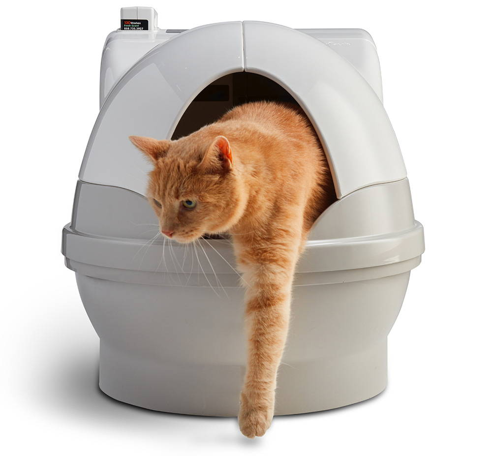 Cat climbing out of CatGenie automatic litter box