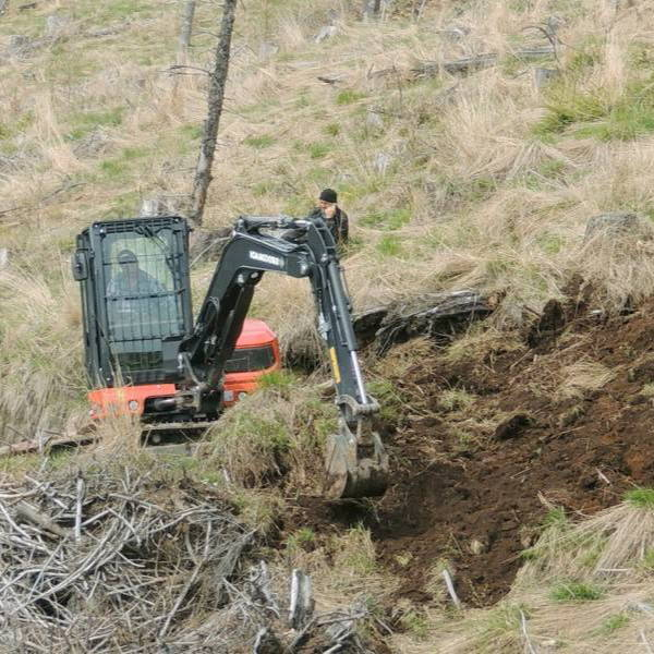 An excavator prepares the land for tree planting in Romania