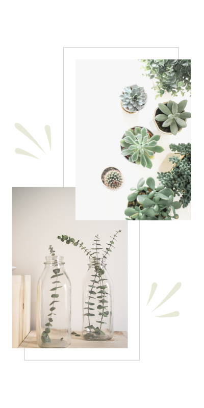 Decorating with minimalism with artificial flowers and succulents
