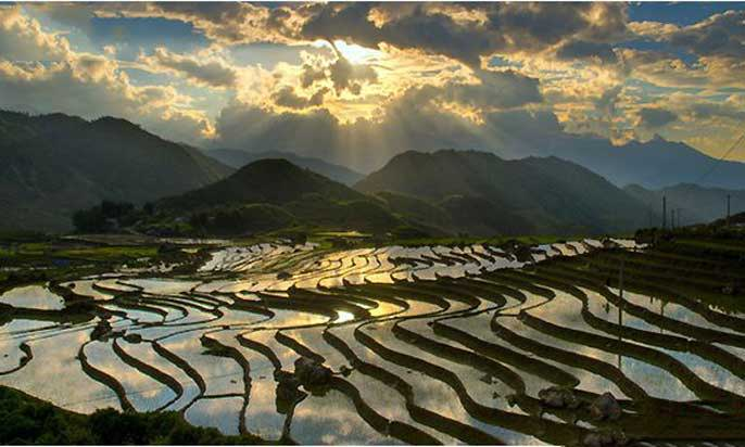 Travelbay Vietnam Tours - When is the best time to visit the Sapa rice fields?