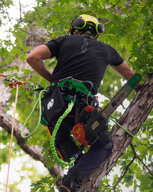 image of Innovation for the hard-working arborist