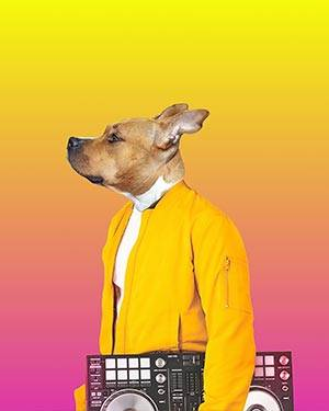 dog renaissance art