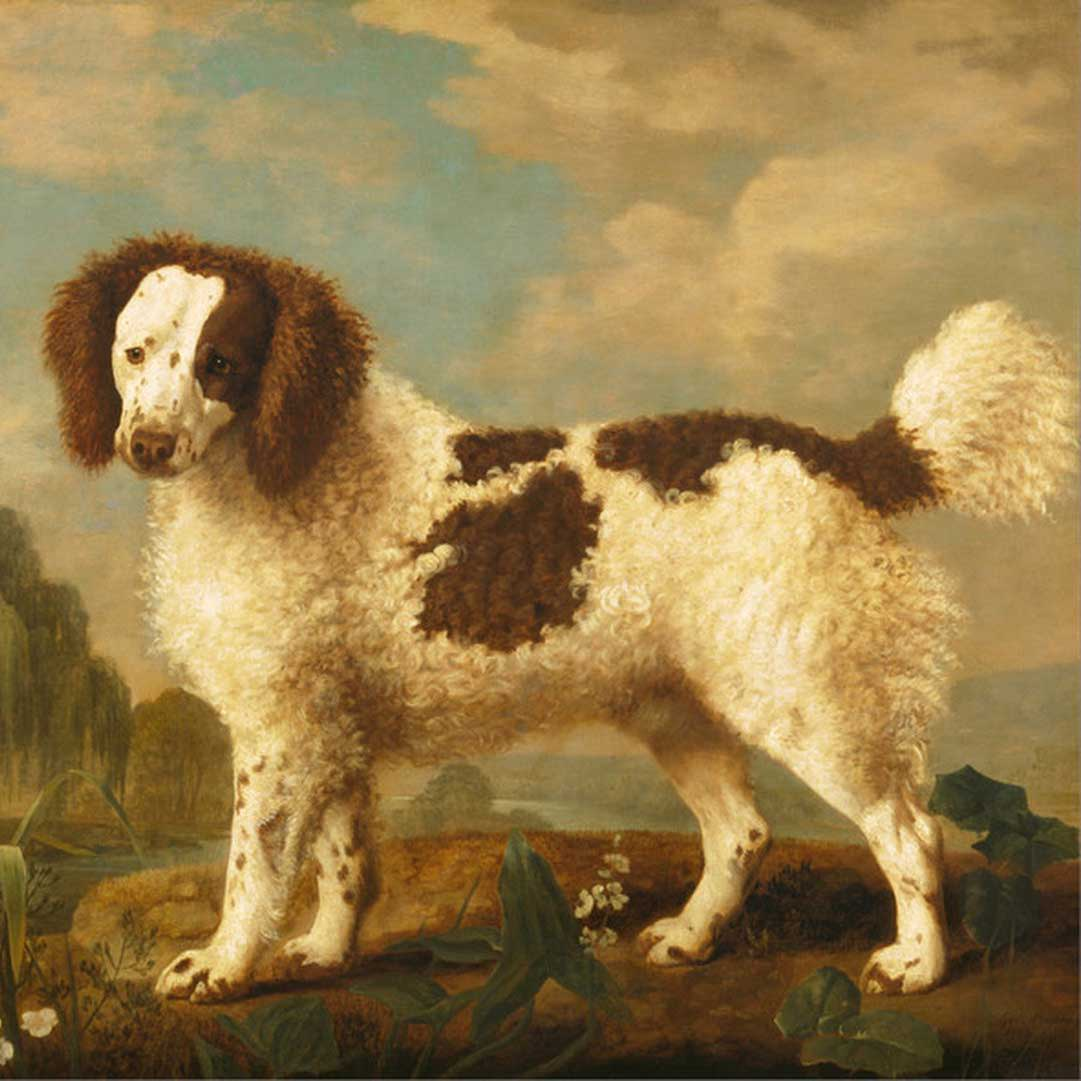 George Stubbs Art