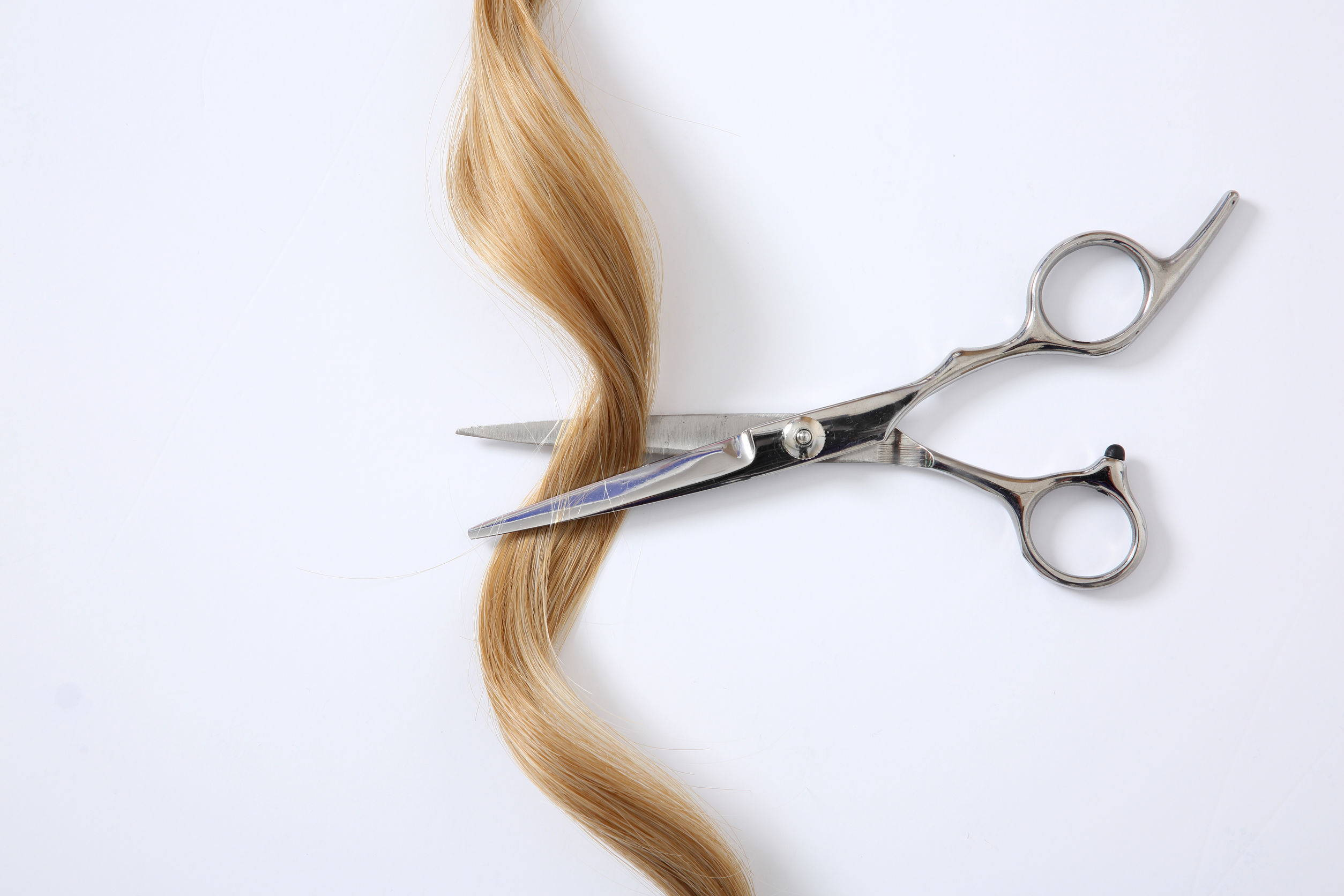 Will Cutting My Curls Make It Curlier?  LUS Brands