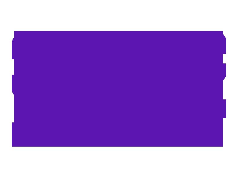SOaR Team logo