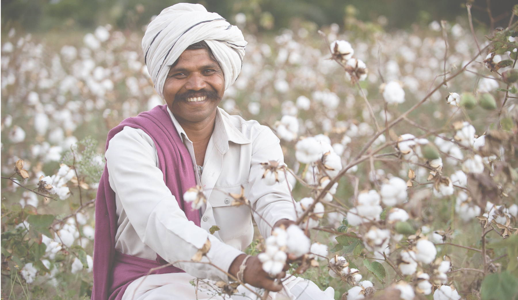proud cotton farmer