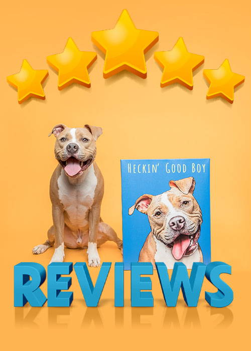 Pop your pup review banner heckin good boy pitbull