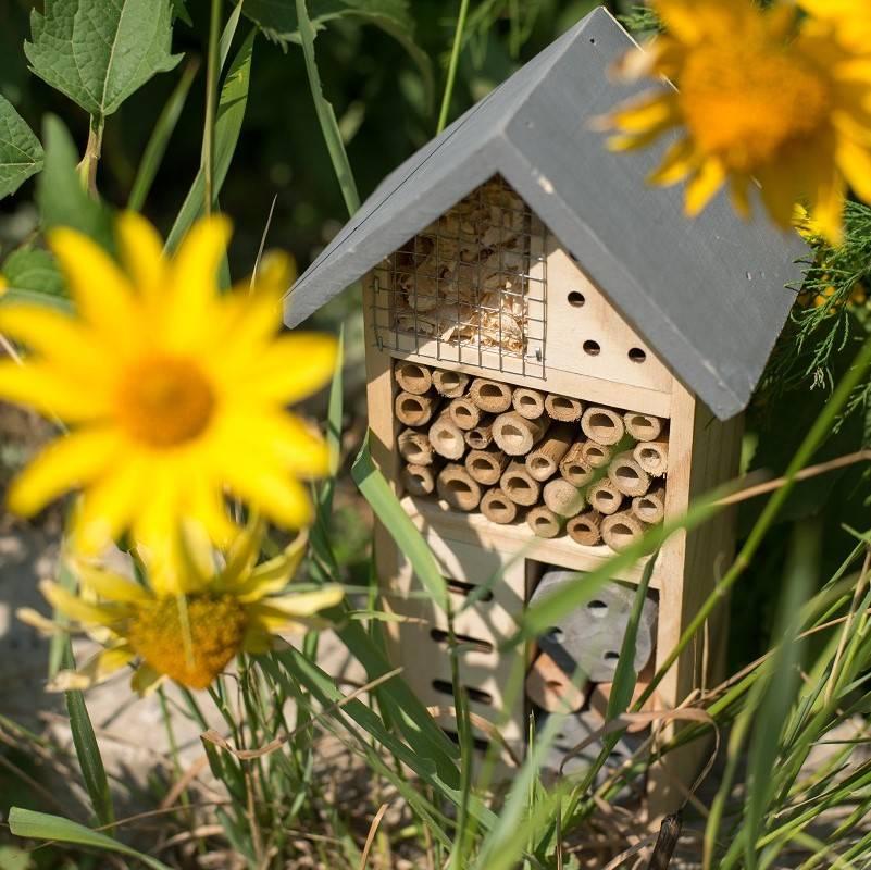 A bug house in a wild garden
