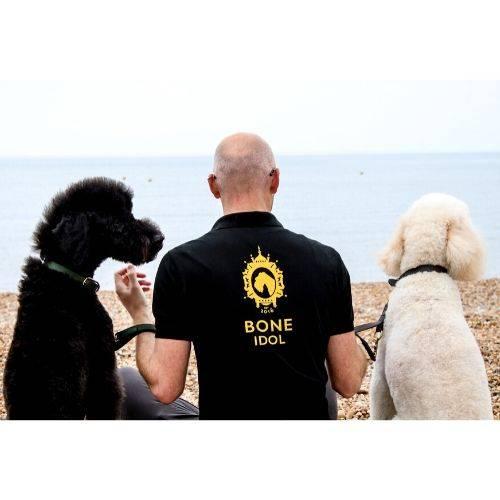 Bone Idol Brighton Dog Friendly Beaches