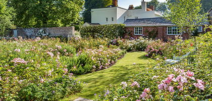 Rose Garden Design Service