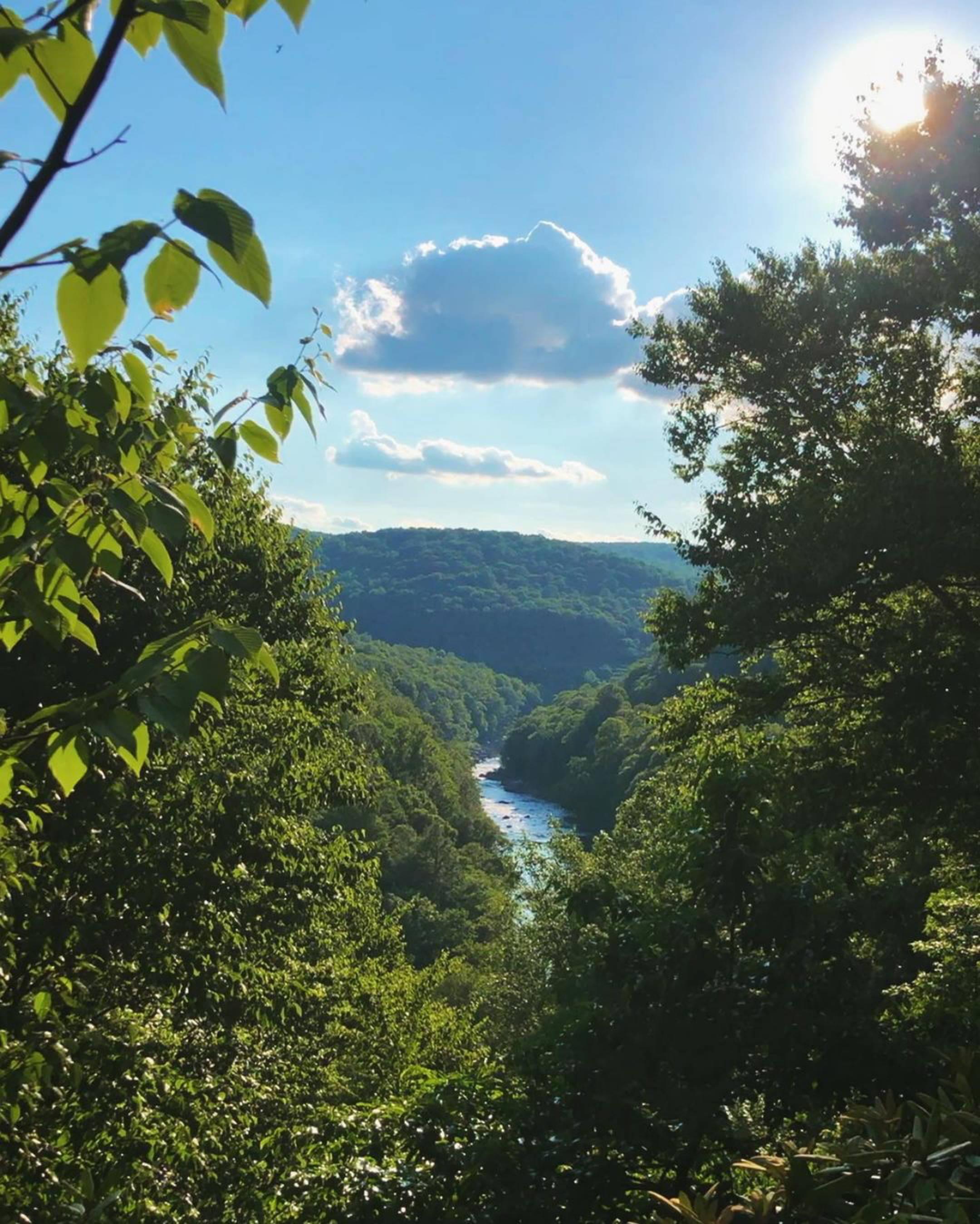 Bear Run Trail Overlook near Mill Run, Ohiopyle, and Fallingwater