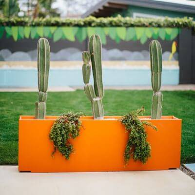 Loll Designs Planters & Decor