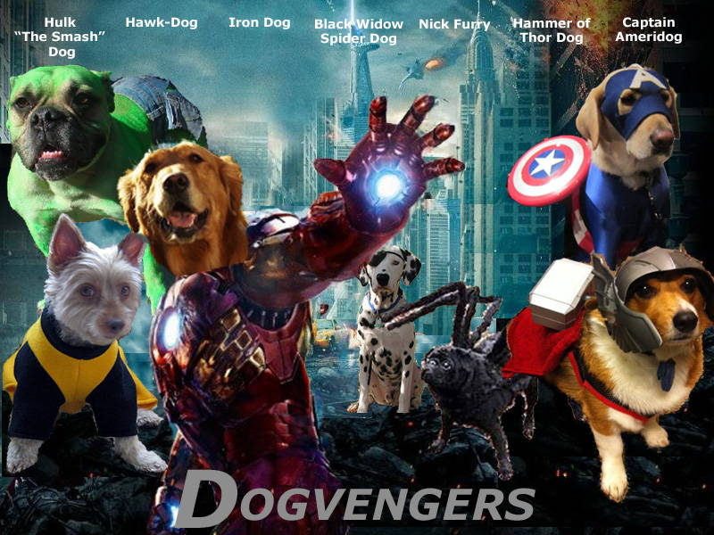 avengers as dogs dogvengers