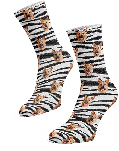 Personalized pup socks with zebra background