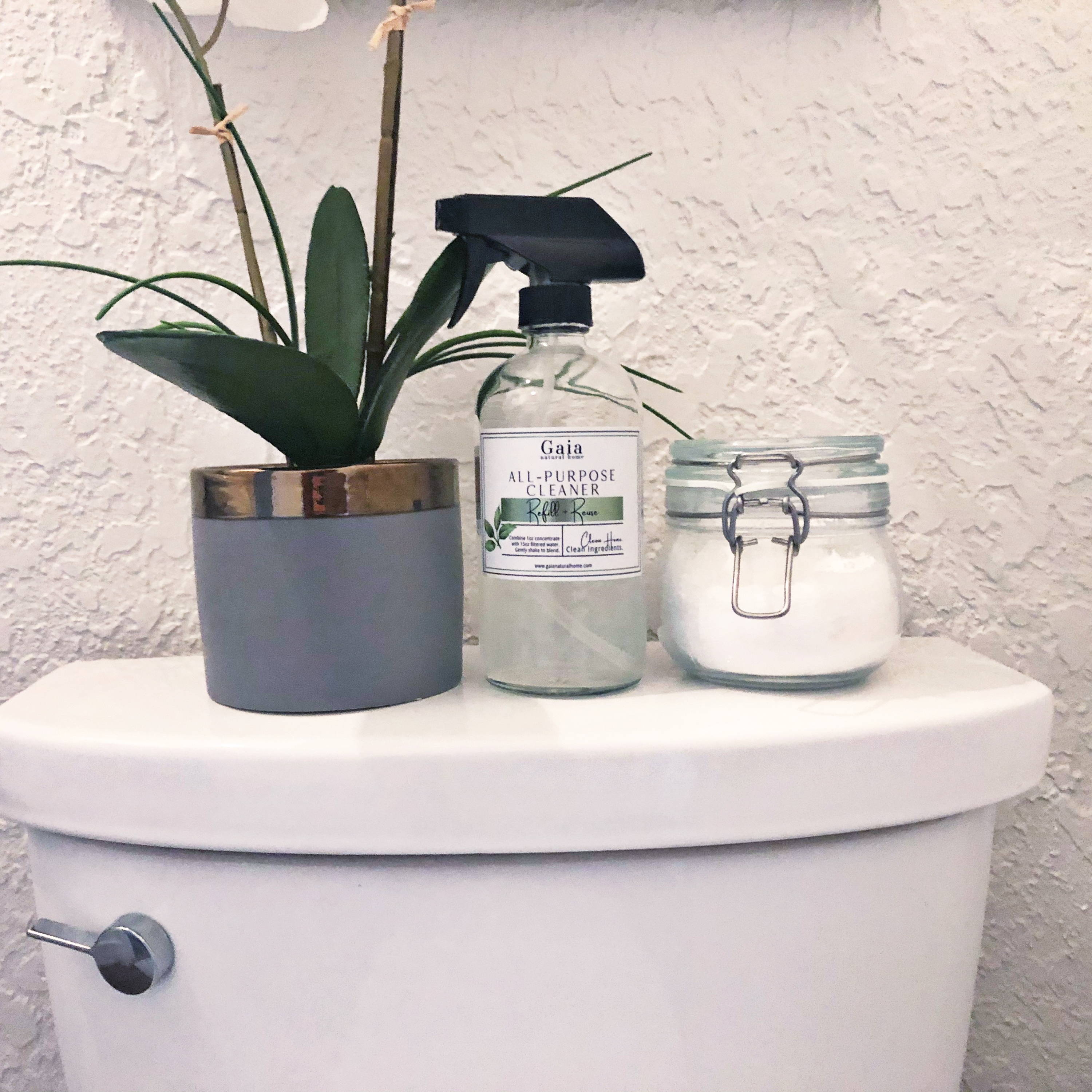 Using All-Purpose Concentrate to clean the toilet