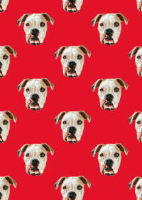 Pitbull pattern art