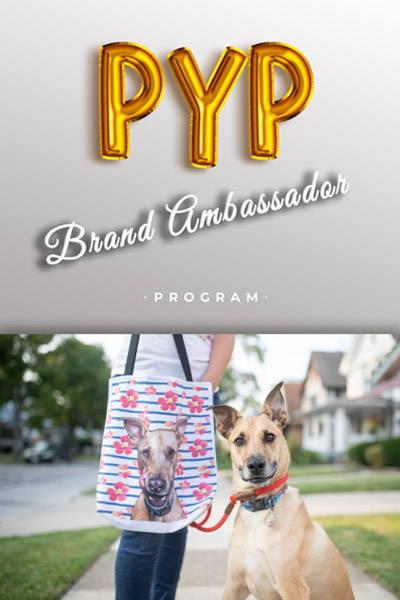 puppy next to tote bag - brand ambassador program banner image