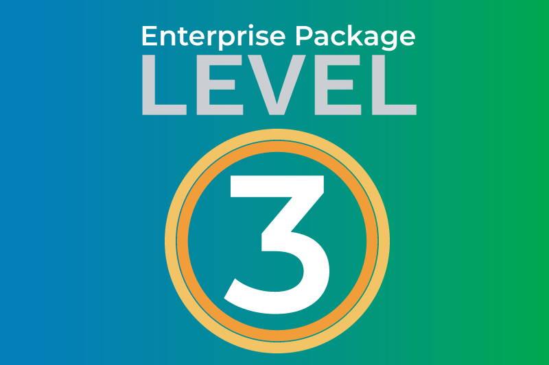 Enterprise level 3