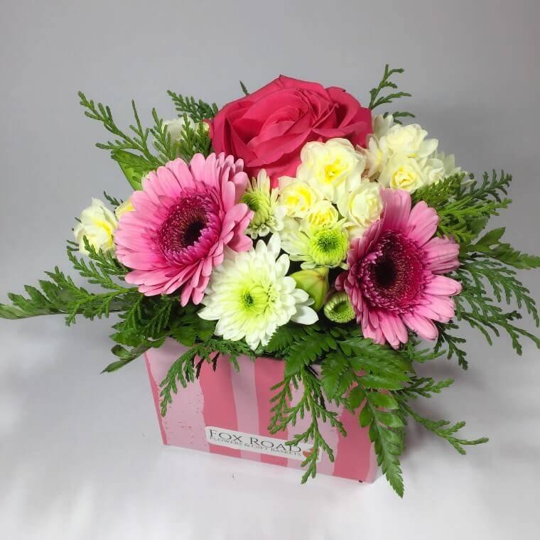 Wellington sympathy flowers