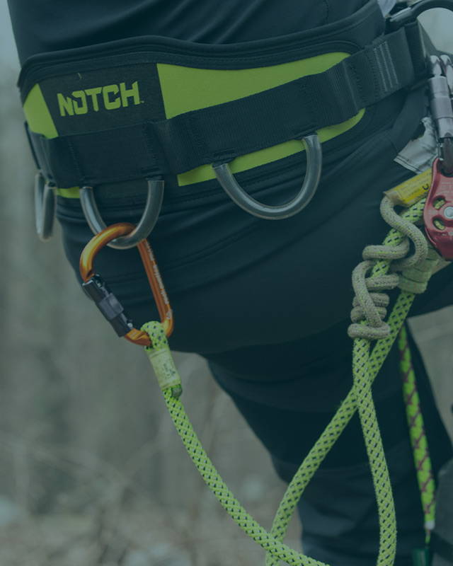 image of Notch Sentry Harness<br />Only $49.99!