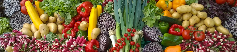 Sapone molle di potassio corroborante insetticida biologico per orto e giardino