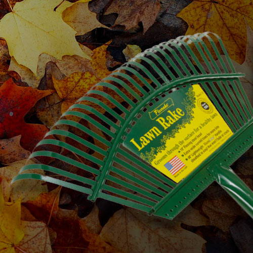 Fresh Start on Fall Cleanup