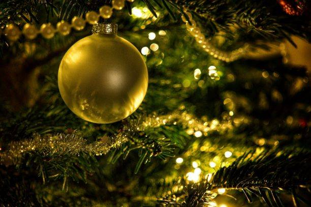 Gold Bauble On Green Christmas Tree