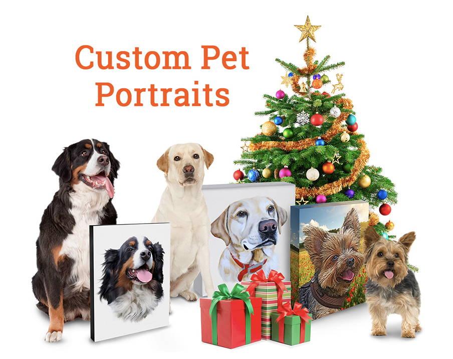 Pet Portraits - MyPoochFace