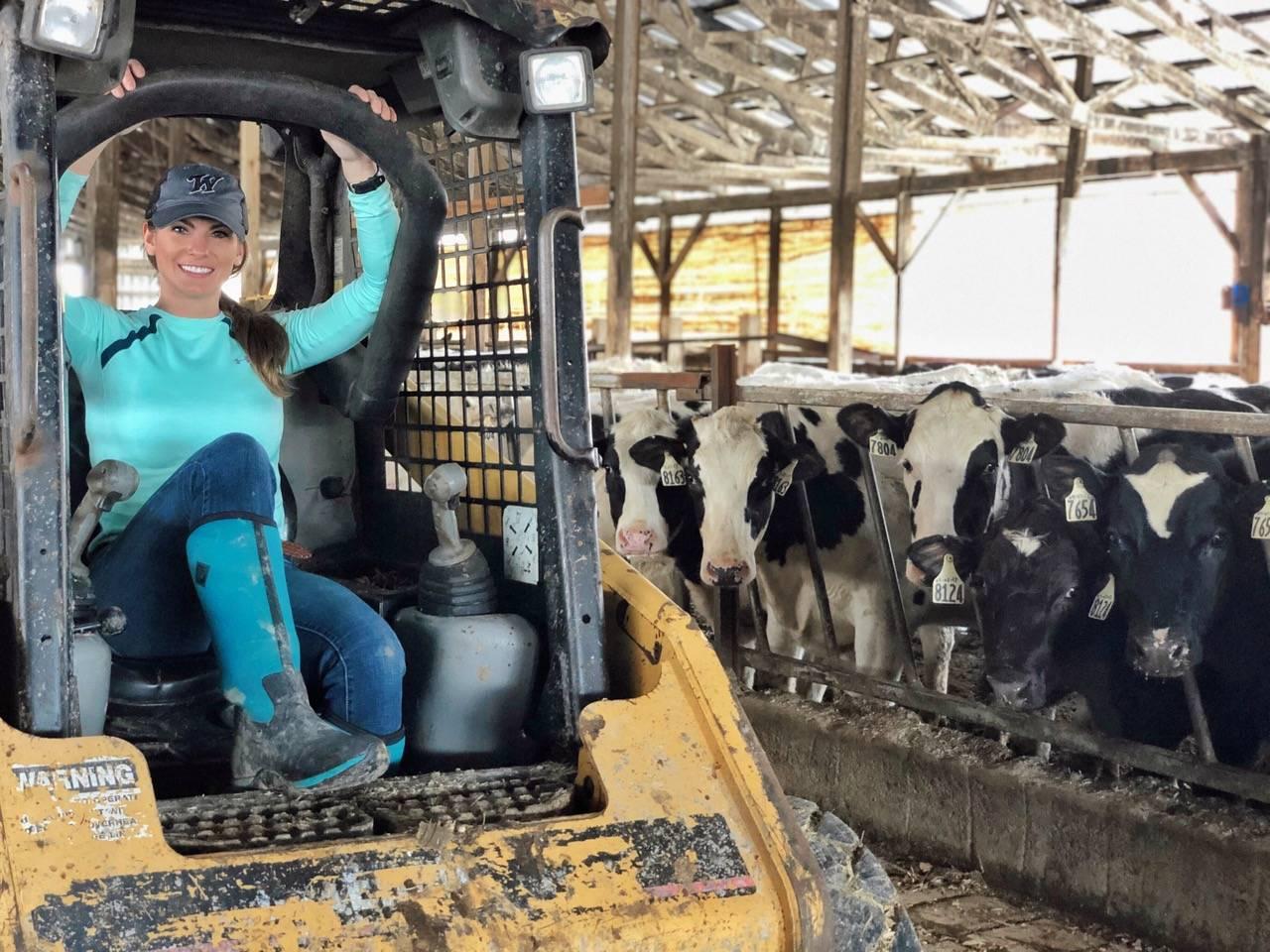 Nikki Boxler cows