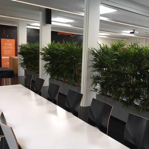 kunstige planter til kontor