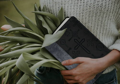 Divinity Boutique - Bible Covers