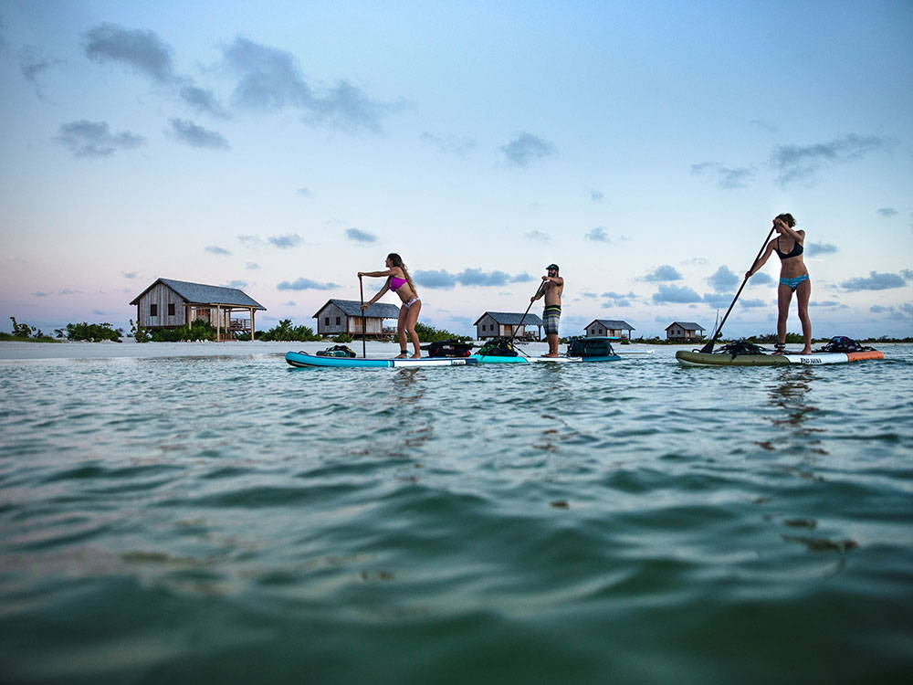 paddling on the calypso board at sunset
