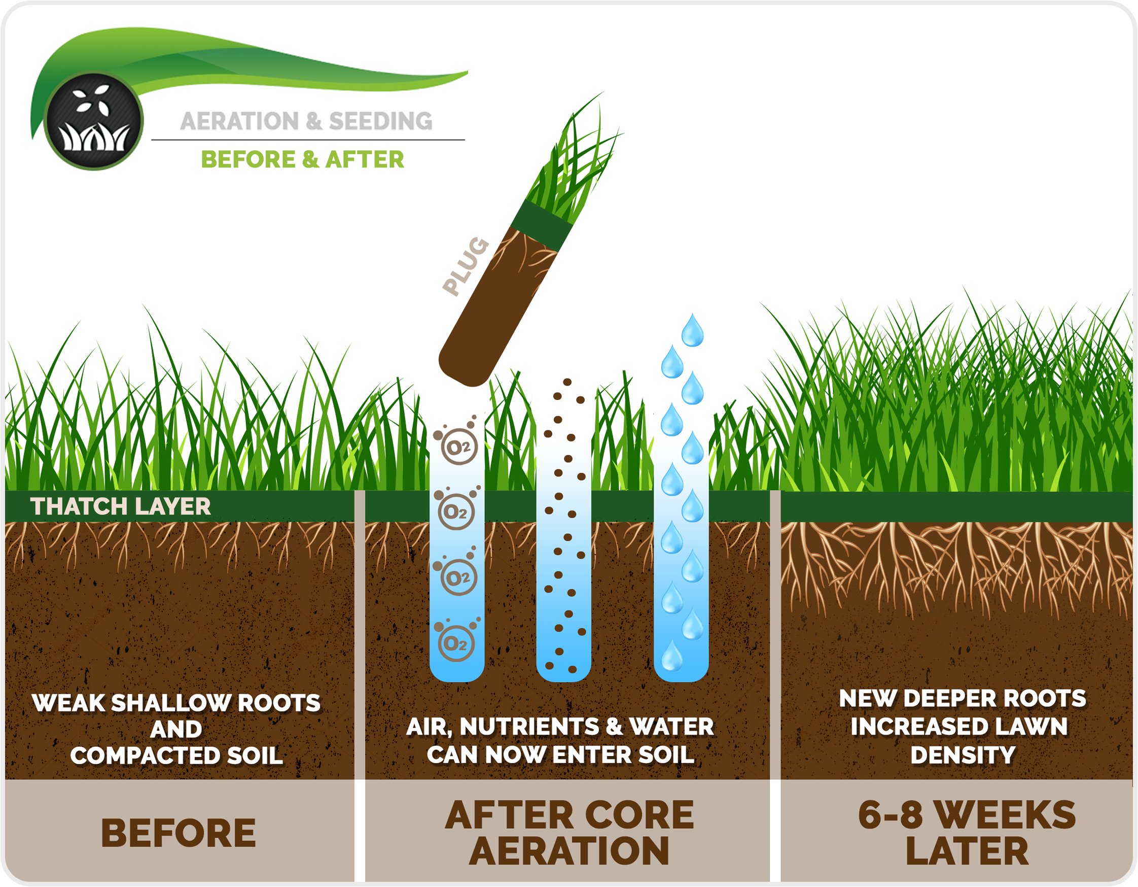 How To Aerate Lawn Plantingtree