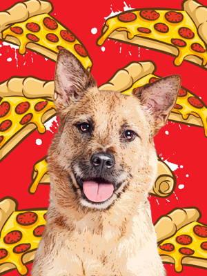 pop art on pizza