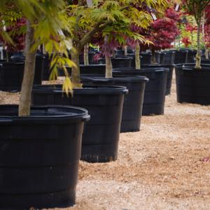 Landscape and Nursery Solutions– Italpollina