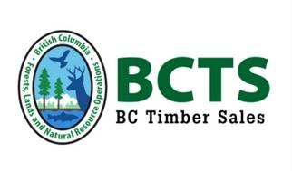 bcts bc timer sales logo