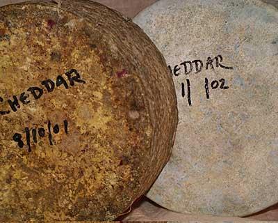Aging Cheese FAQ | How to Make Cheese | CheeseMaking com