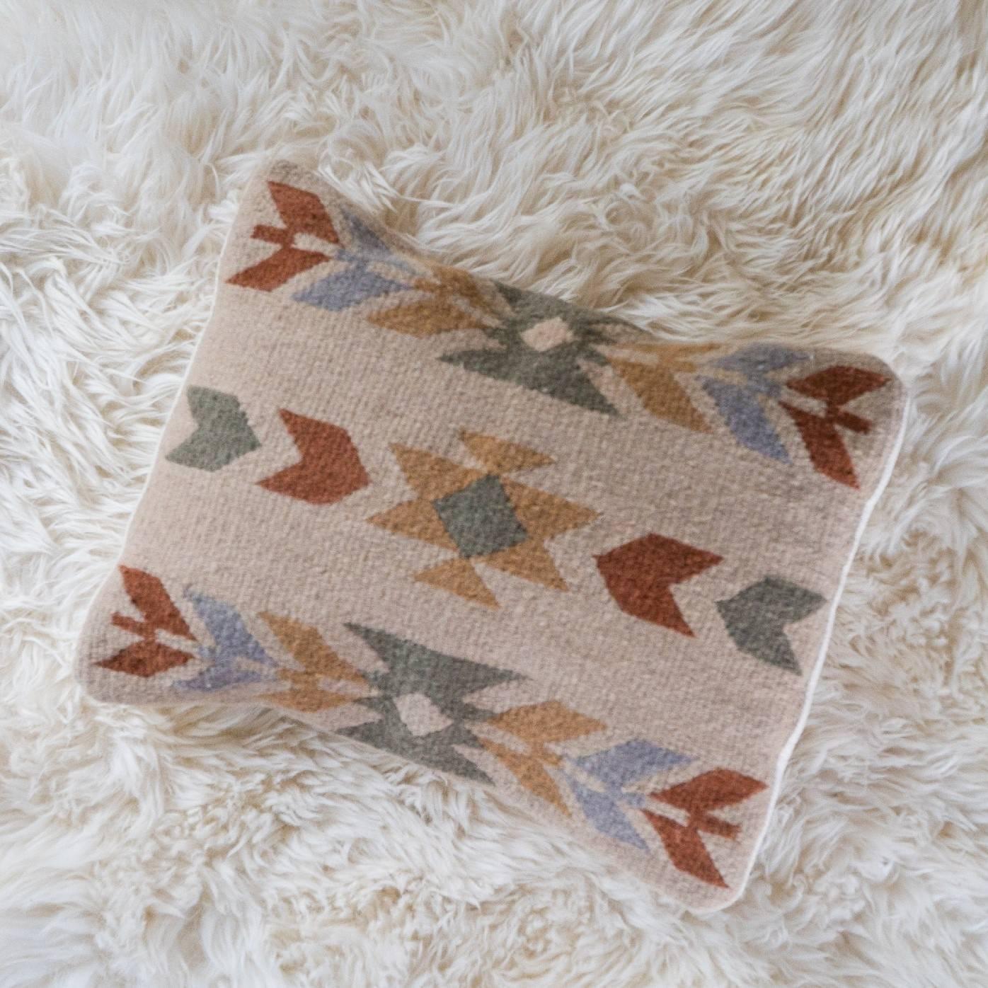 Condor Skies Pillow Cover