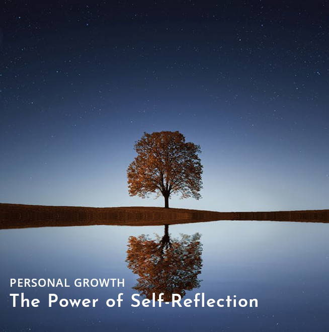 self-reflection-tree-in-water