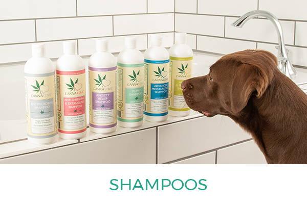 CannaLove™ Shampoo