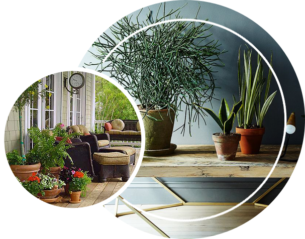 Adding plants to highlight certain locations on your home.