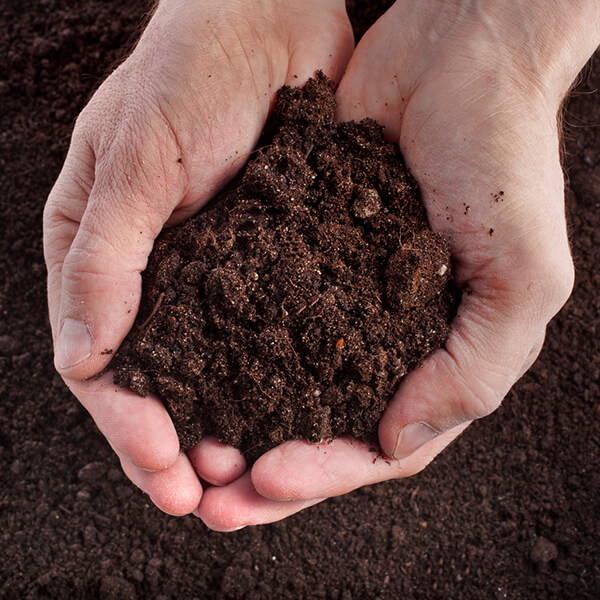 High Quality Organics Express organic soil