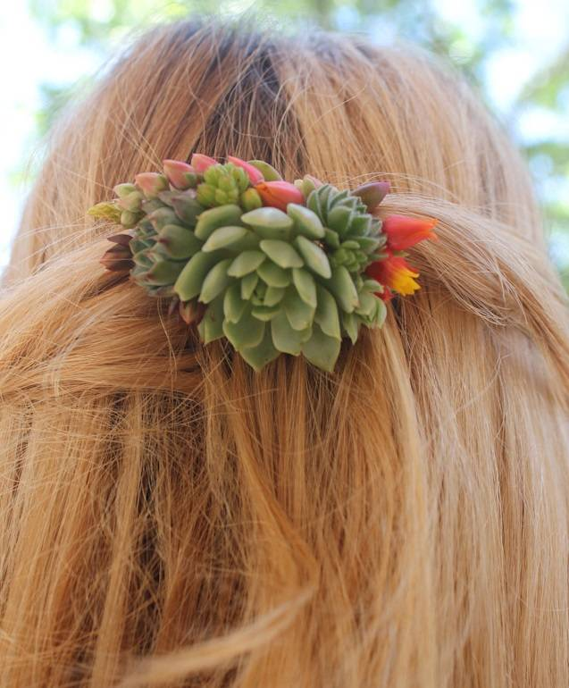 succulent combs hair bride accent succulents